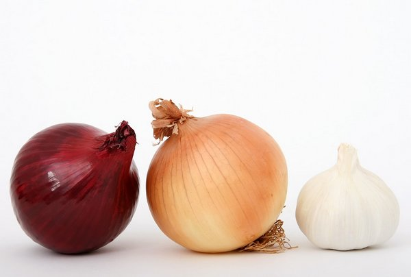 Treatment of hair loss with garlic and onions